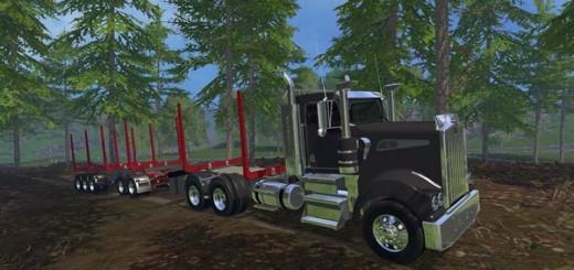 Holz Transport Pack