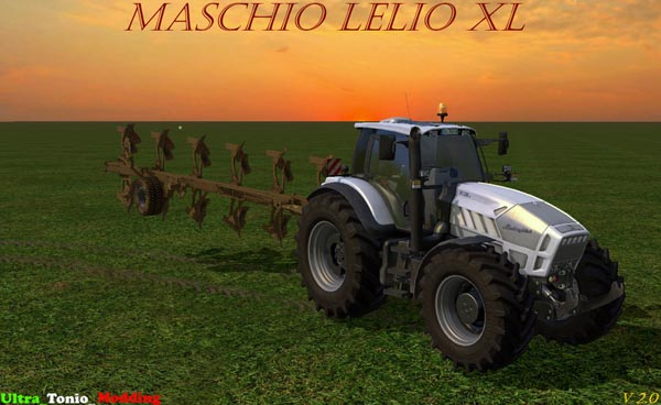 Maschio Lelio 6