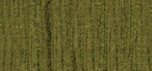 Silage Textures